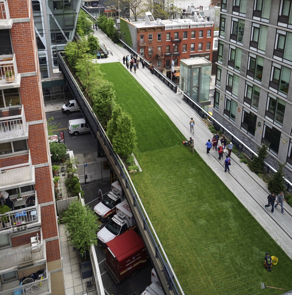 Friends of the High Line gardening crew gets the lawn ready for summer